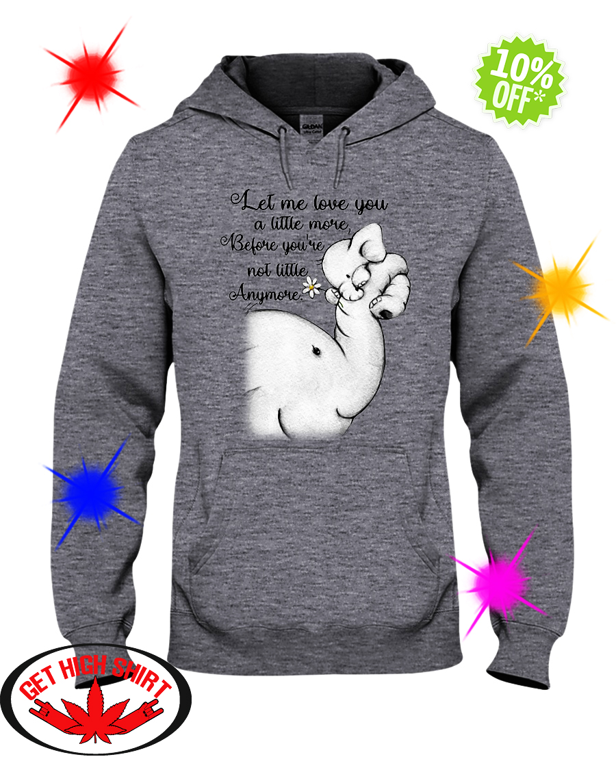 Elephant let me love you a little more before you're not little anymore hoodie