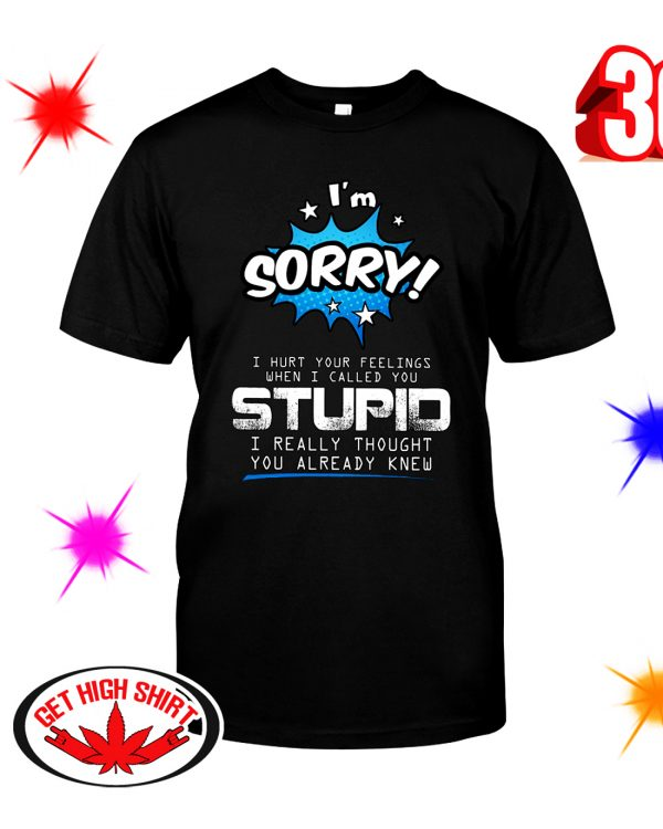 I'm sorry I hurt your feelings when I called you stupid shirt