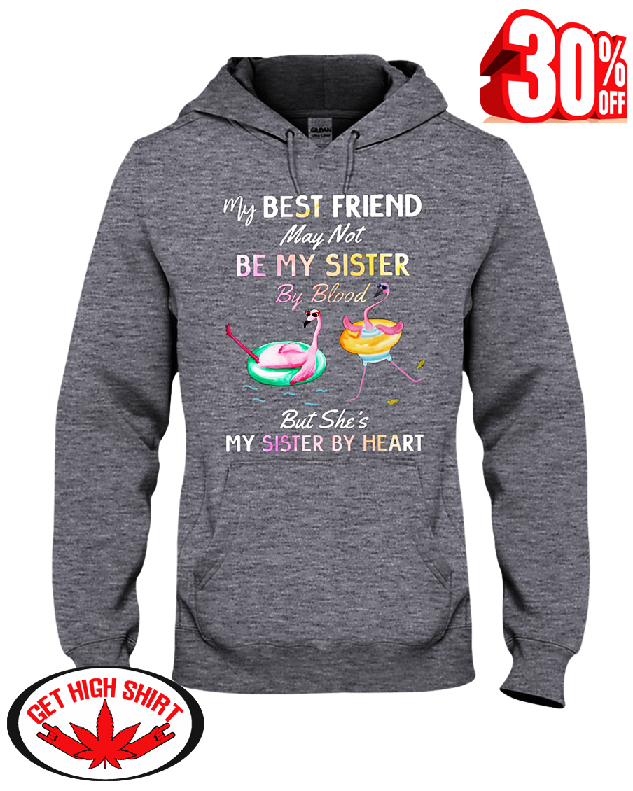 Flamingo my best friend may not be my sister by blood but she's my sister by heart hooded sweatshirt