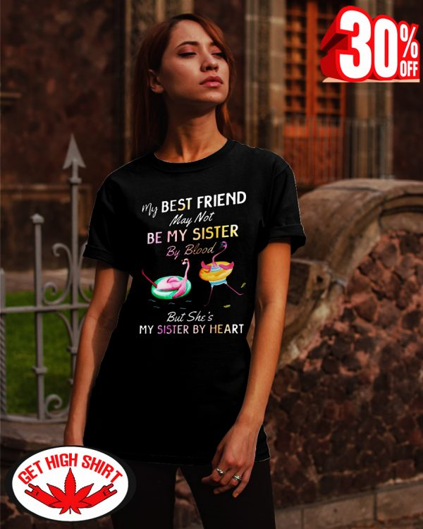 Flamingo my best friend may not be my sister by blood but she's my sister by heart shirt