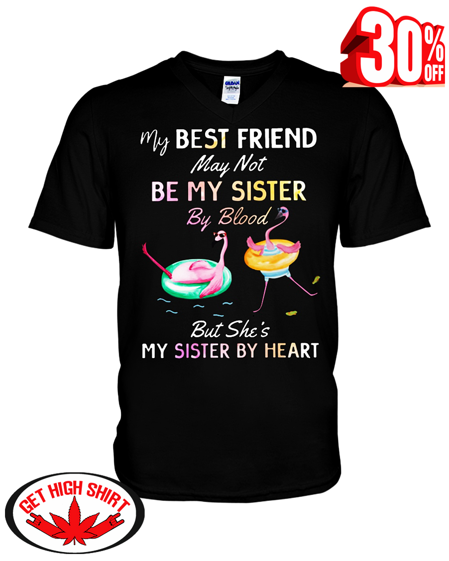 Flamingo my best friend may not be my sister by blood but she's my sister by heart v-neck t-shirt